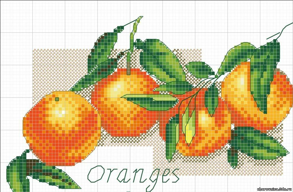 Апельсин вышивка крестом схемы 66