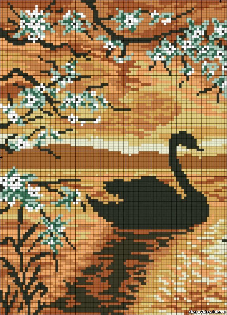 Вышивка крестом схемы черный лебедь