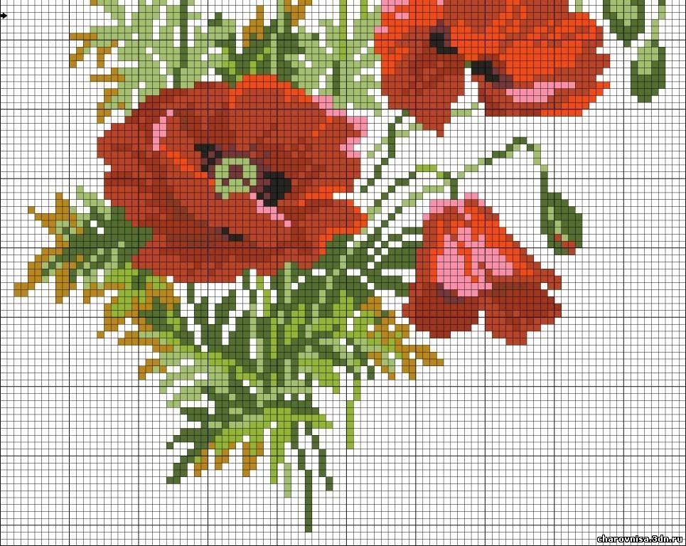 Вышивки схемы цветы маки схемы