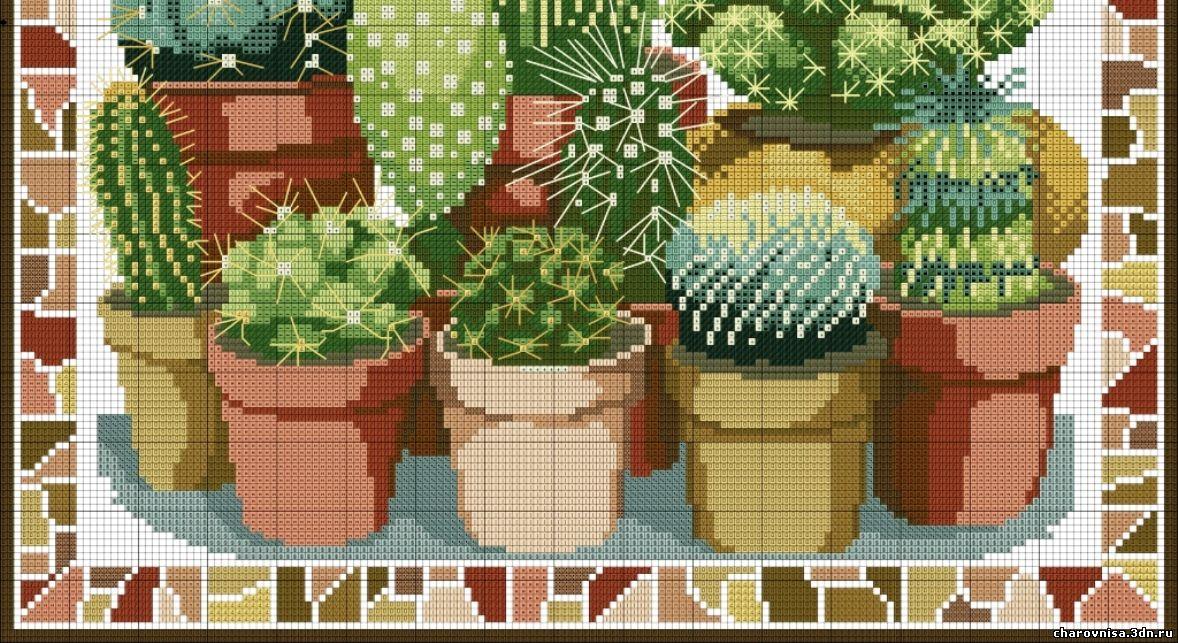 Схемы вышивки с кактусами 505